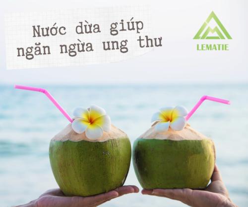 🌴 Nước dừa có chứa chất giúp ngừa ung thư 🌴